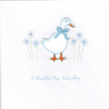 Photography of Baby Blue Goose